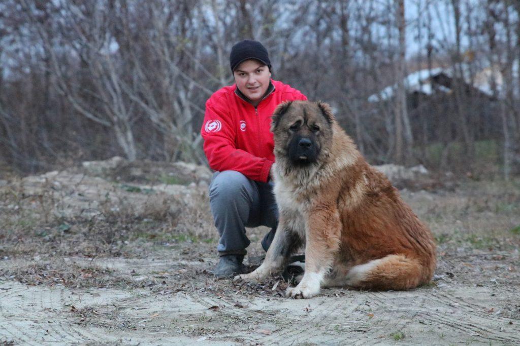Valentine's day cu animalul de companie